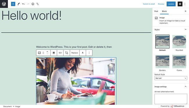 Add alt text in Image Settings section of Block tab in sidebar of your WordPress dashboard