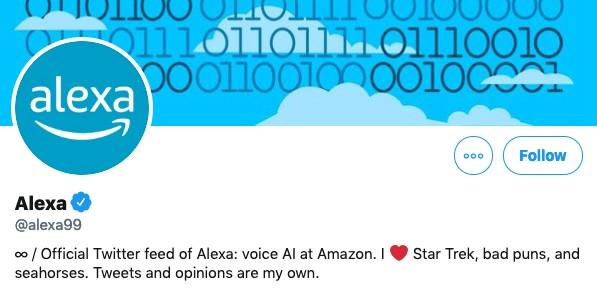 Funny twitter bio example from amazon @Alexa99