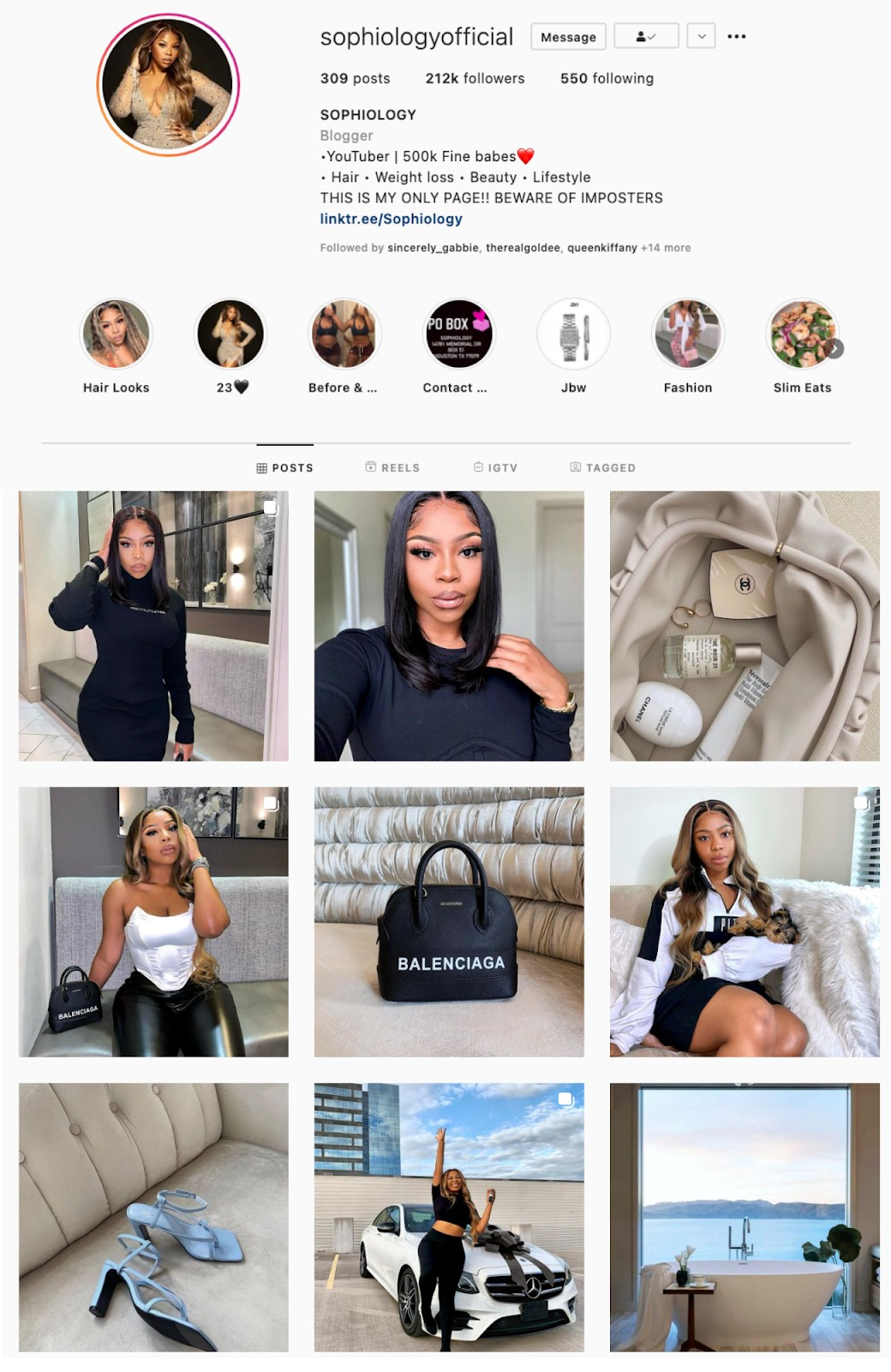 Transition Instagram Theme Example