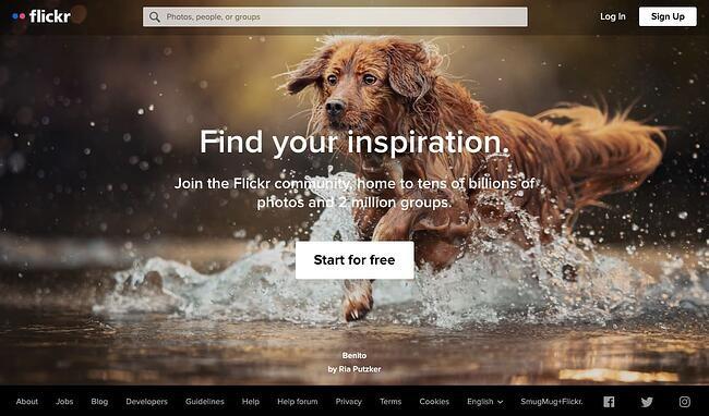online portfolio: Flickr portfolio