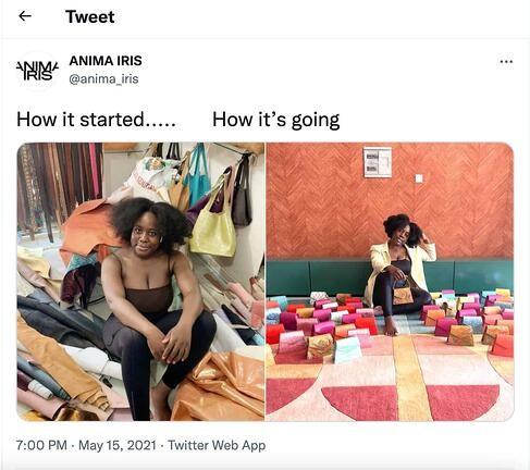 meme marketing example by Anima Iris